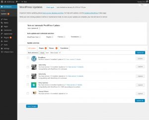 Automatic-Updates-WordPress-more-details
