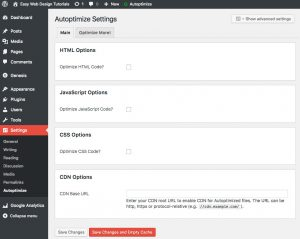 Autoptimize settings WordPress plugin