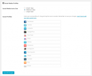 Coming Soon Pro Social Media Settings