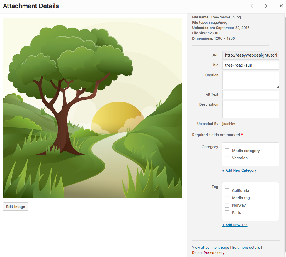 Media Taxonomies plugin Attachment Details