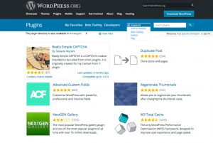 My wireframe of the Plugins screen at WordPress.org