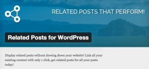Related Posts For WordPress top banner