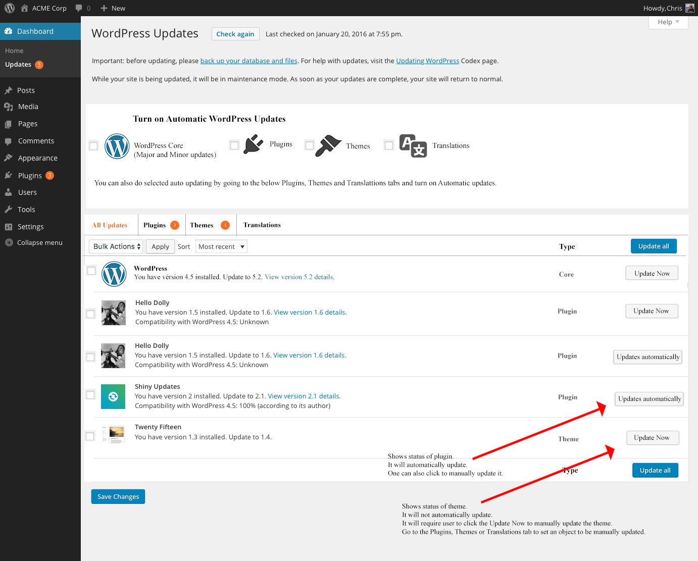 WordPress-Updates-main-screen